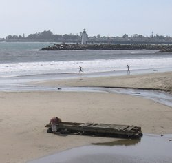 Tsunami Debris near Santa Cruz Harbor