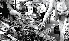 Julia Child is credited with introducing French cooking techniques to mainstream America in THE FRENCH CHEF, which began in 1963. Here, she shops at an open-air market.
