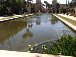 The lily pond in Balboa Park on Monday August 13, 2012.