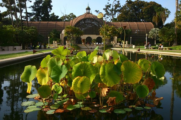 The Lily Pond sits in front of the Botanical Building at Balboa Park on August 2, 2008 in San Diego, California.