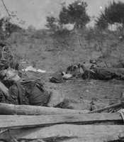 Dead Confederate soldiers at the scene of Ewell's attack near the Spottsylvania Court House in Virginia, May 19, 1864.