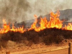 A brush fire in the Campo area on September 23.