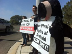 Protestors from PETA outside SeaWorld on Oct. 3, 2012.