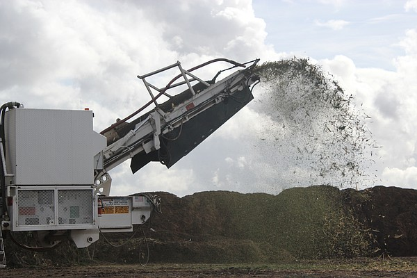 A tree grinder expels ground-up Christmas trees as part o...