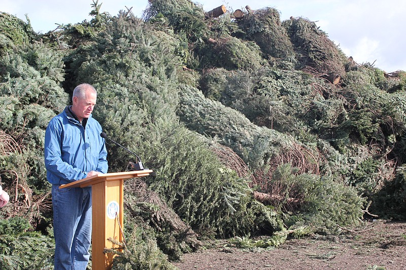 San Diego Environmental Services Department director Chri. - San Diego Pines For Christmas Tree Recycling KPBS