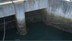 The ocean intake at the Encina power plant.