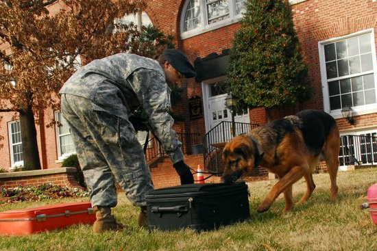 Sgt. Malkia Litaker, who served with the 947th in 2009, and military working dog, Gerko, work together to find simulated explosives during a demonstration, Jan. 14, 2009, at Fort McNair, Washington, D.C.