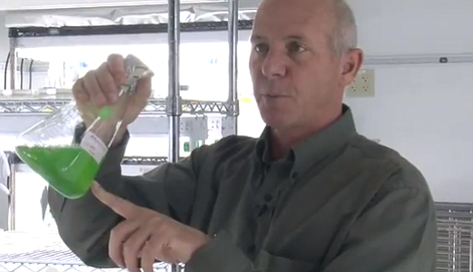 UCSD molecular biologist Stephen Mayfield says algae fuel...