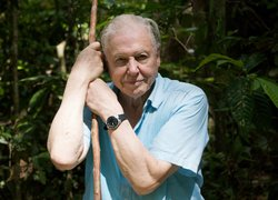 David Attenborough in forest in Sabah, Borneo.