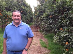 Noel Stehly, an organic citrus and avocado farmer in northern San Diego Count...