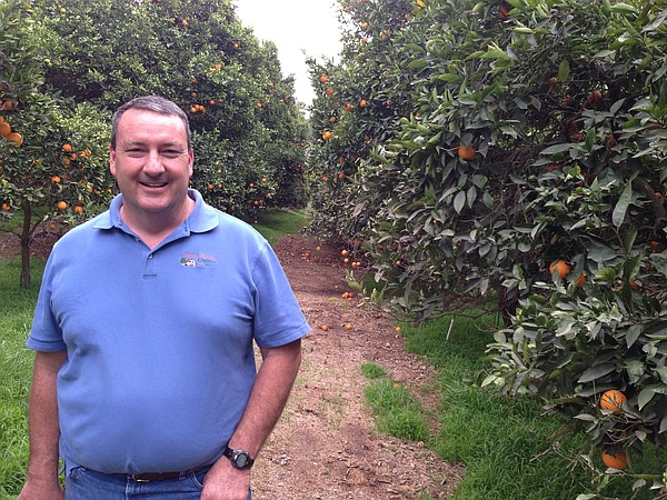 Noel Stehly, an organic citrus and avocado farmer in nort...