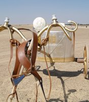 Electrum chariot with harness and solar disc.