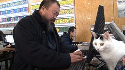 Ai Weiwei works on his computer in his Beijing home studio, as one of his doz...