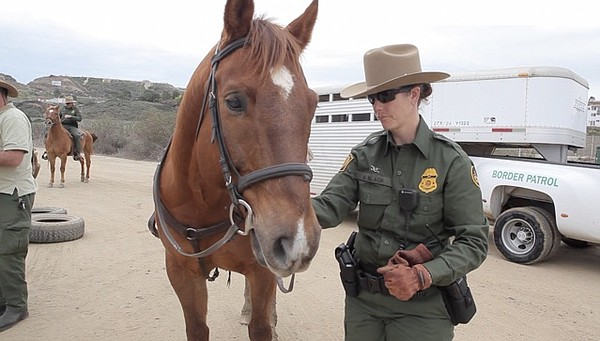 Border Patrol Agent Monica Slack and her assigned mount, Shamus, stand in fro...