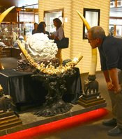 Bryan Christy examines an ivory sculpture, Beijing, China.