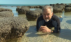 Dr. Richard Smith and Stomatolites at Shark Bay.