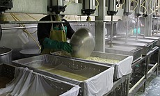 Tofu Making at San Diego Soy Dairy.