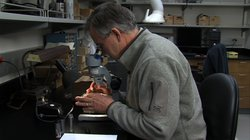 Researcher Mark Lowry examining squid beaks in a lab.