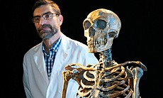 Paleoanthropologist Antonio Rosas with a Neanderthal skeleton at his institute in Madrid, Spain.