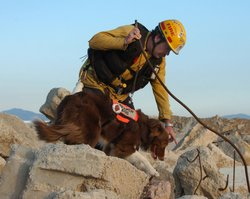 Hunter, a former shelter dog, is now paired with a fireman Billy Monahan. Thi...