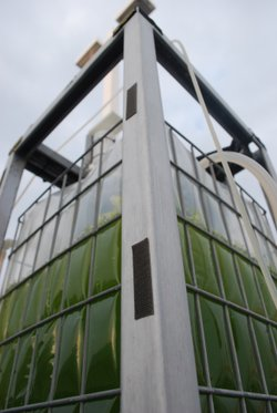 Cellana's vertical photobioreactor at its Kona Demonstration Facility on the Big Island of Hawaii.