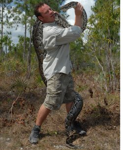 Herpetologist Shawn Heflick has a permit to hunt down Burmese pythons to help...