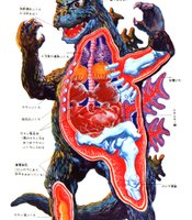What's inside a kaiju?
