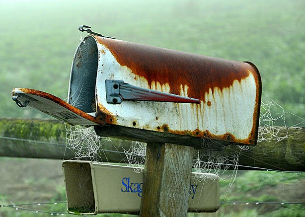 The U.S. Postal Service kindly asks that you not send spiders through the mail.