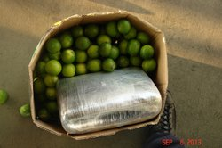 CBP officers at the Otay Mesa commercial port of entry discovered 1,623 pounds of marijuana in a shipment of limes.