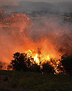 A wooded area ablaze during the 2007 Witch Creek/Guejito wildfire in Southern California. Federal researchers look at the fire's impact on buildings in one community based on their pre-fire exposure risk to direct fire contact and embers.