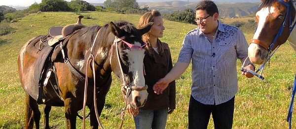 Krystal Redmon of All the Pretty Horses of Baja Rescue with Jorge Meraz and h...