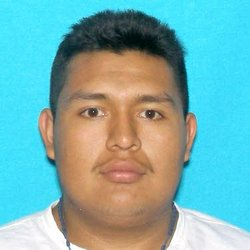 Eduardo Flores-Rosalas, 19, allegedly abducted 14-year-old Elizabeth Romero f...