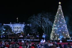 The lighting of the National Christmas Tree on the Ellipse in Washington, D.C., Dec. 6, 2012.