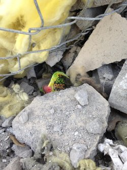 A candy wrapper pokes out from beneath the rubble of an explosion that happen...