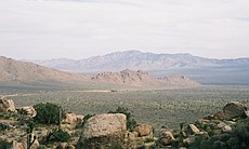 View south from Teutonia Peak, Mojave National Preserve.