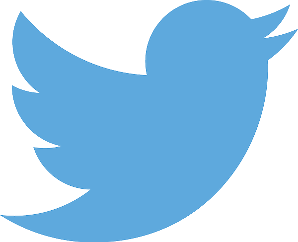 The Twitter bird logo