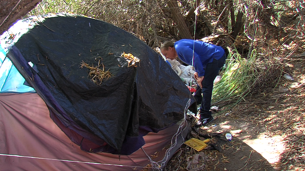 Bob McElroy, president and CEO of the Alpha Project, searches for homeless people in need along the San Diego River in Mission Valley on January 8, 2014.