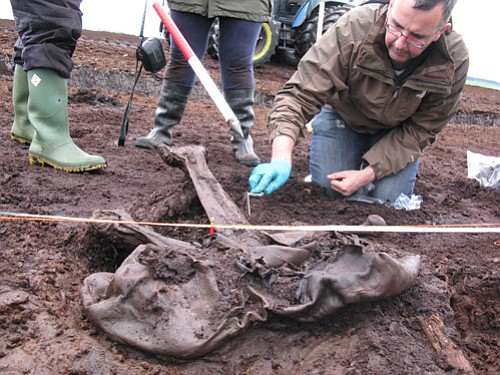 The NMI team excavate Cashel Man.