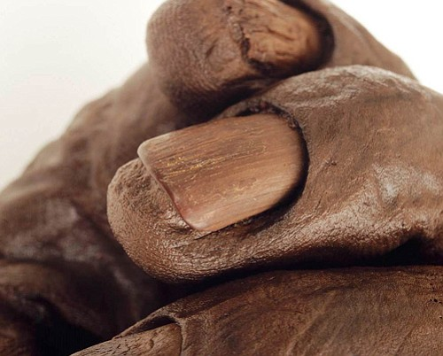 Close-up of Old Croghan Man's hand showing the remarkable preservation of the...