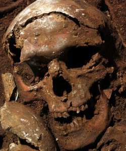 Human skull, catacomb of St. Peter and and Marcellinus.