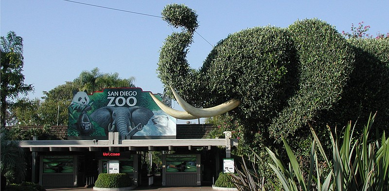Elephant-shaped topiary sits near the entrance to the San Diego Zoo in Balboa...