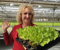 Host Nan Sterman checks out some baby lettuce on her visit to Go Green Agricu...