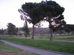 San Luis Rey Golf Course, Bonsall, Feb 2014