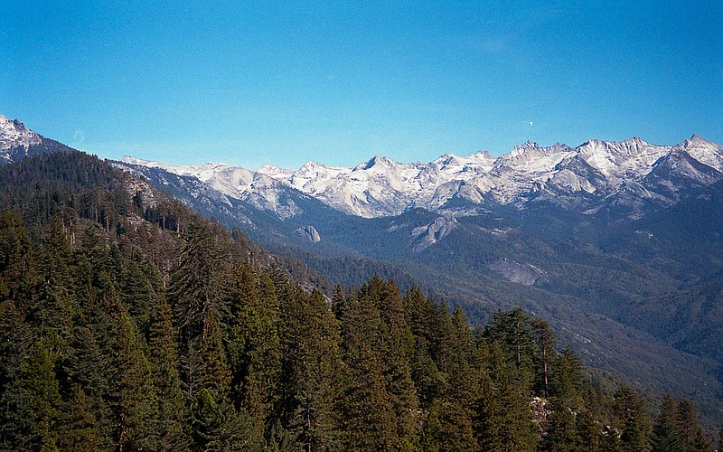 National parks, like Sequoia Kings Canyon National Parks pictured here, had n...