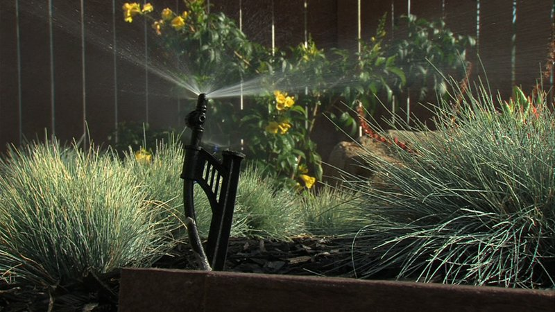 A water-efficient sprinkler sprays plants in a Chula Vista yard in this undat...