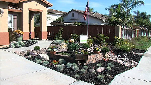 The new drought friendly lawn at the home of Troy Ray in Chula Vista.
