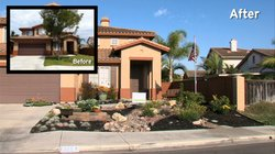 The new drought friendly lawn at the Chula Vista home of Troy Ray is shown al...