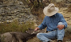 Joe Hutto looking at a deer who has her head in his lap, Riverton area, Wyoming.