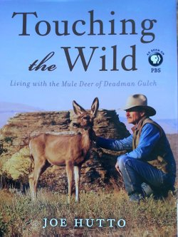 "Joe Hutto has authored several titles including his latest, ""Touching the Wild, Living with the Mule Deer of Deadman Gulch."""
