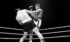 "Cassius Clay ""stinging like a bee!"""